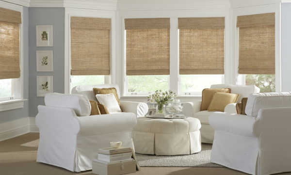 Mann Kidwell Window Shades